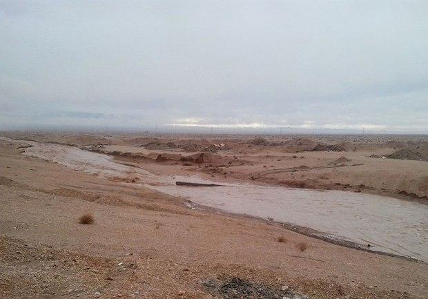 وزش باد و بارش رگباری در خراسان جنوبی ادامه دارد