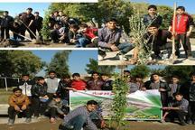 مشارکت سازمان های مردم نهاد در ترویج فرهنگ درختکاری در دزفول