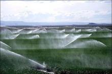 تجهیز57 هزار هکتار از اراضی کشاورزی آذربایجان غربی به سیستم آبیاری تحت فشار
