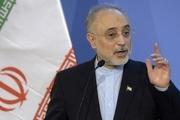 علیاکبر صالحی: از شایعه حضورم در وزارت علوم شگفتزده شدم