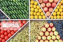 ۲.۵ میلیارد دلار محصولات باغی از کشور صادر شد