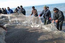 صید ماهیان استخوانی در دریای مازندران تمدید شد