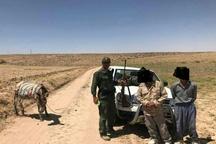 دستگیری 2 شکارچی غیرمجاز در طارم سفلی