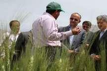 دستآوردهای پژوهشی باید در اختیار کشاورزان قرار گیرد  برجام بستر توسعه تحقیقات کشاورزی را فراهم کرد