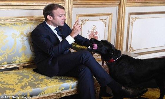 وقتی رئیس جمهور فرانسه در تلویزیون ملی سوژه شد+ تصاویر