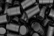 بختیار: مجلس از طرح پیشفروش نفت استقبال میکند