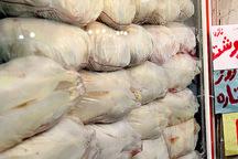 مرغ فروش متخلف در الوند به پرداخت جریمه نقدی محکوم شد