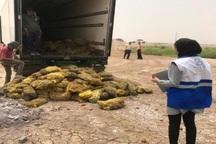 10 تن سیب زمینی فاسد در خرمشهر معدوم شد
