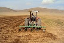 80 هزار هکتار اراضی دهگلان زیرکشت پاییزی گندم می رود