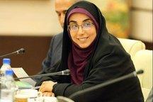 اعتبار 313 طرح عمرانی درجنوب استان بوشهر تامین شد