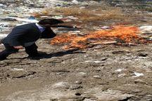 ۲۰۰ کیلوگرم آلایشات مرغ و گوشت غیر بهداشتی در پیرانشهر از چرخه مصرف خارج شد