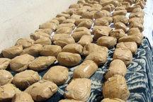 ۳۱۰ کیلوگرم تریاک در برازجان استان بوشهر کشف شد
