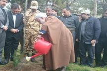 کاشت 457 اصله نهال در مهاباد به یاد شهدای ارتش
