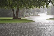 باران بهاری در 16 شهرستان خراسان رضوی بارید