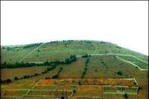 5707 هکتار از اراضی ملی استان اردبیل زمین کشاورزی شد